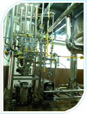 Cakesep plant installed for Cipla